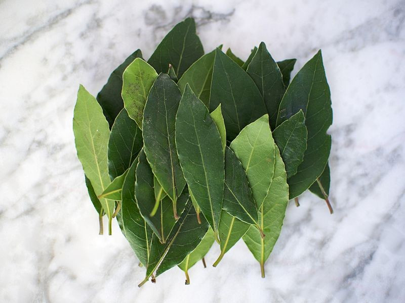 Fresh Bay Leaf (50g pack)