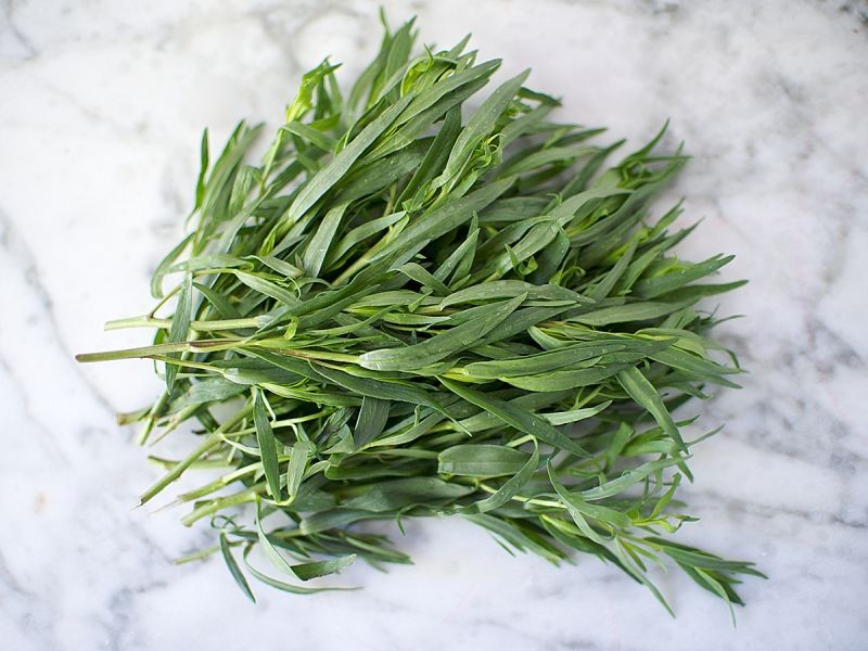 Fresh Tarragon (50g pack)