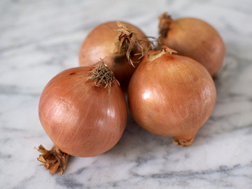 Pack of  White Onions 1 x 4